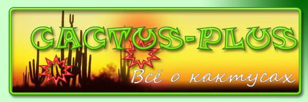 Кактус+ Всё о кактусах